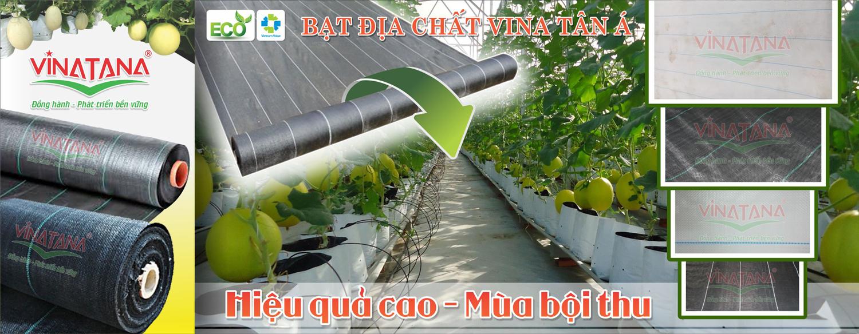 Batdiachat.com – Công Ty Cổ Phần Vina Tân Á